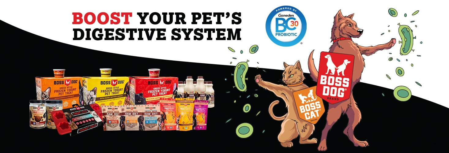 Boost your Pet's digestive system