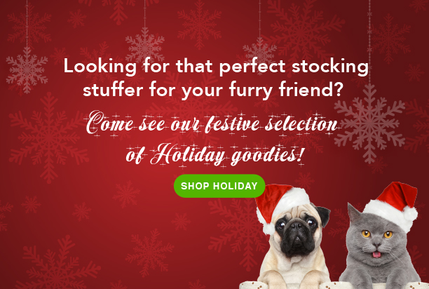 Looking for the perfect stocking? Shop holiday.